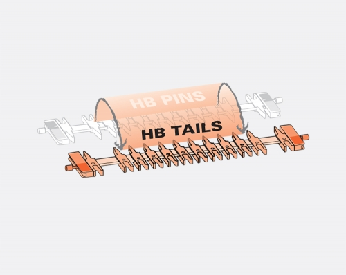 HB Tails