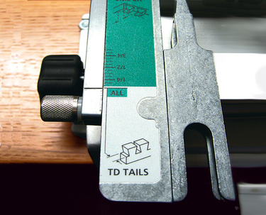 Scale-TD Tails-015 RT crp website