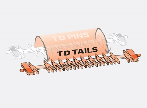TD Tails website